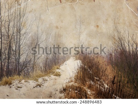 winter evening landscape with falling snow. Fog background with trees and dry grass covered with snow, blur - stock photo