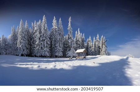 Winter fairy tale after heavy snowfall in the mountain forest - stock photo