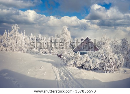 Winter fairytale, heavy snowfall covered the trees and houses in the mountain village. Carpathian, Ukraine, Europe. - stock photo