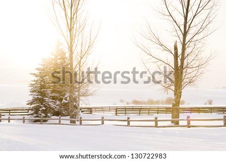 Winter farm in Steamboat Springs, Colorado. - stock photo