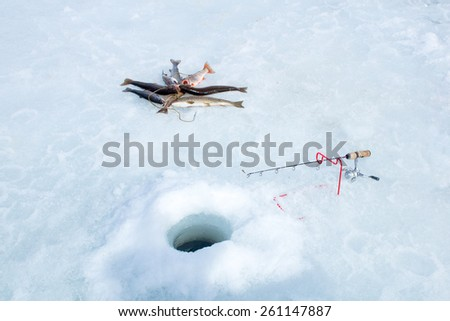 Winter fishing: fishing rod, hole and catch the fish on Kukan - stock photo