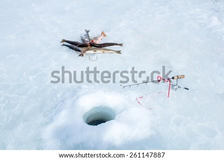 Winter fishing: fishing rod, hole and catch the fish on Kukan - stock photo