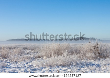 Winter foggy field under snow with forest at the background - stock photo