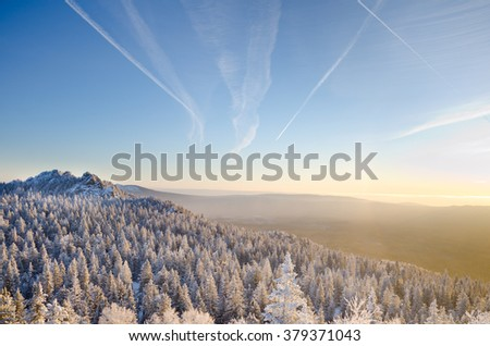 Winter forest in the mountains sunrise  Majestic winter trees glowing by sunlight. Dramatic wintry scene. Location Carpathian national park,Alps. Beauty world. Happy New Year! - stock photo