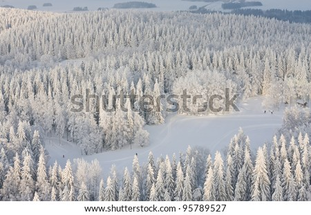 Winter forest with frosty trees and skiers, aerial view. Kuopio, Finland - stock photo