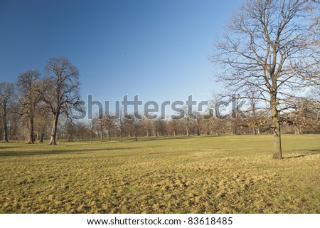 Winter in Hyde Park. It is  is one of the largest parks in central London - stock photo