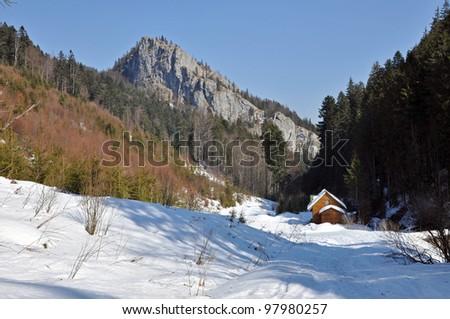 Winter in the Carpathian mountains, Transylvania, Romania - stock photo