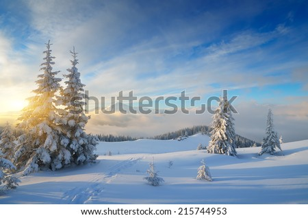 Winter in the mountains. Christmas landscape on a sunny morning. Carpathians, Ukraine, Europe - stock photo