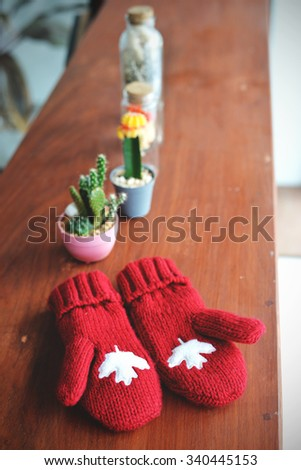 Winter in vintage style. Red gloves and cactus on wooden background - stock photo
