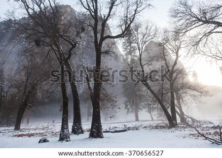 Winter in Yosemite National Park, California - stock photo