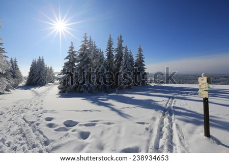 Winter landscape and snow wrapped trees in Sumava, Czech republic - stock photo