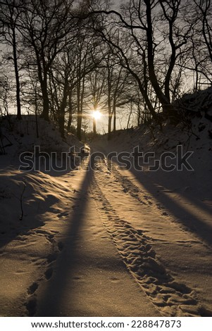 winter landscape at evening, forest track at sundown - stock photo