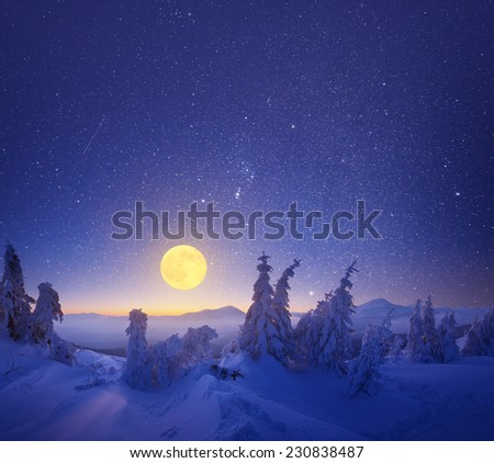 Winter landscape at night. Light of the full moon - stock photo
