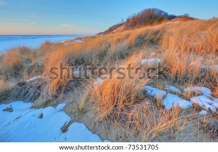 Winter landscape beach grasses and iced shoreline of Lake Michigan, Saugatuck Dunes State Park, Michigan, USA - stock photo