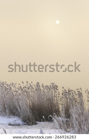 winter landscape dense fog over the river early in the morning at sunrise - stock photo