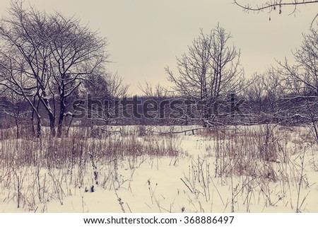 Winter landscape. Field and trees covered with snow. - stock photo