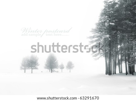 winter landscape for postcard or background - stock photo