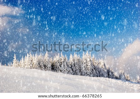 Winter landscape in mountains Carpathians, Ukraine and a valley with huts - stock photo