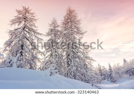 Winter landscape  in mountains Julian Alps, Slovenia - stock photo
