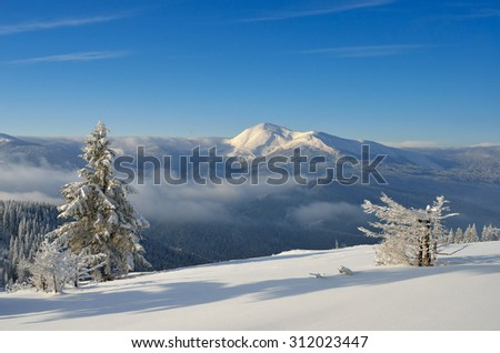 Winter landscape in sunny weather, frosty morning. Snow in the mountains. Christmas view. Carpathians, Ukraine, Europe - stock photo
