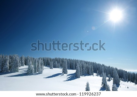 winter landscape in the forest - stock photo