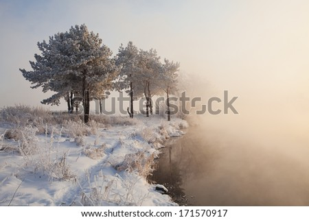 Winter landscape. Lake, fog and a trees. - stock photo