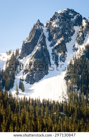 Winter Landscape of Mount Rainier National Park - stock photo