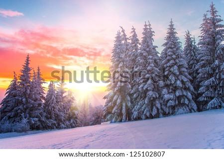 Winter landscape on a sunset. Bulgaria - stock photo