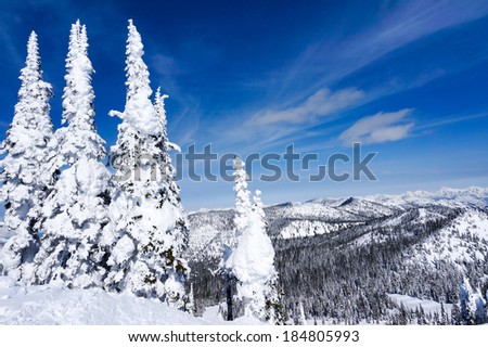 Winter landscape on Big Mountain in Whitefish, Montana, overlooking Glacier National Park, with copy space - stock photo
