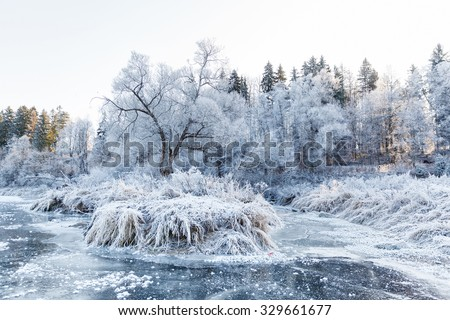 Winter landscape, river under the ice and tree branches covered with white frost - stock photo