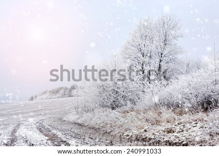 Winter landscape snow-covered dirt road in frosty day - stock photo