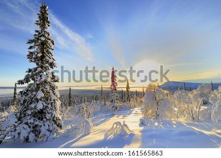 winter landscape, stubba nature reserve, laponian area, laponia, norrbotten, lapland, sweden - stock photo