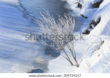 winter landscape sunny frosty morning on the river, blue sky and trees in hoarfrost on the shores of - stock photo