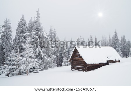 Winter landscape with a hut in the forest. Ukraine, Carpathian Mountains - stock photo