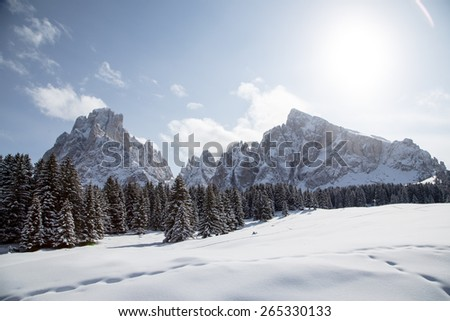 Winter landscape with breathtaking mountains /  Winter landscape on Monte Pana, South Tyrol, Italy. - stock photo