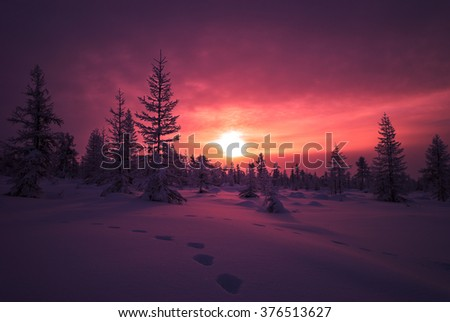 Winter landscape with forest, cloudy sky and sun  - stock photo
