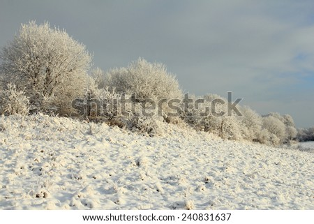 Winter landscape with frosty trees and snowy field - stock photo