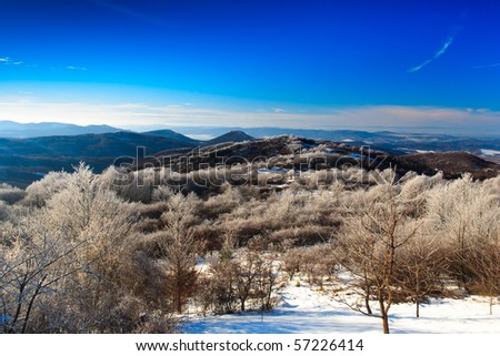 winter landscape with frozen trees and blue sky - stock photo
