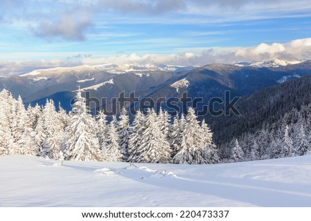 Winter landscape with snow - stock photo