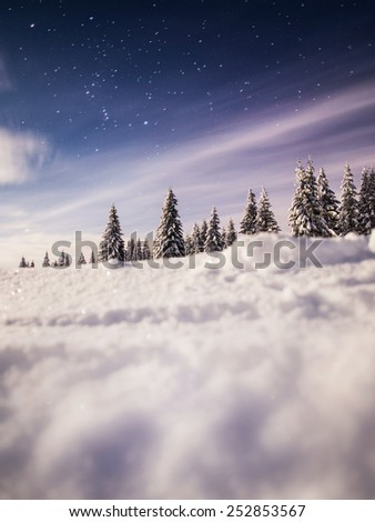 winter landscape with stars - stock photo