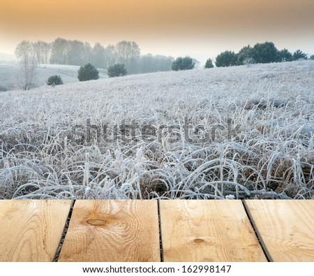 winter landscape with wood floor.frozen grass - stock photo