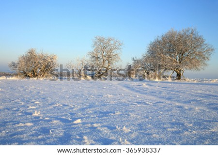 Winter meadow in Table Mountains in Poland Sudetes by sunrise. - stock photo