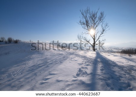 Winter mountain hills at sunny day - stock photo