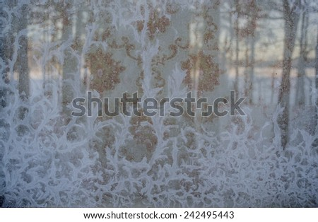 Winter natural background, texture. Beautiful patterns on the Windows - stock photo