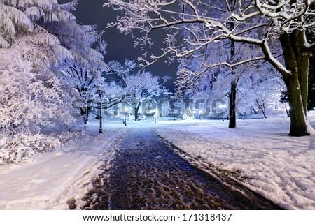 Winter night park in Old Riga, Latvia close to Bastion hill - stock photo