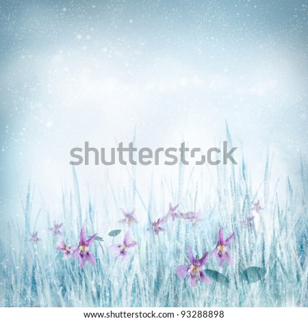 Winter or spring nature background with frozen grass and violet flowers. Spring floral background - stock photo