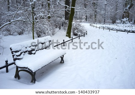 Winter park covered with fresh  snow - stock photo