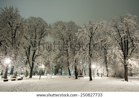 Winter park in the evening covered with snow . - stock photo