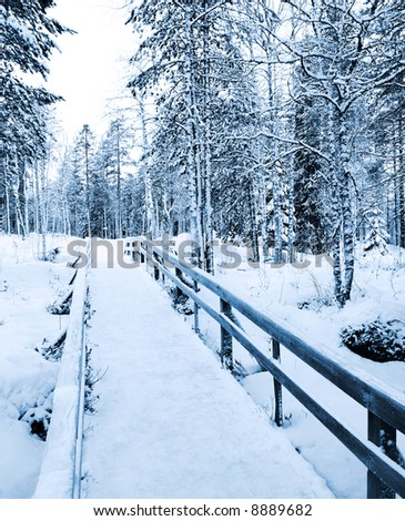 Winter path - bridge to the wilderness in Rovaniemi, Lapland, Finland - stock photo