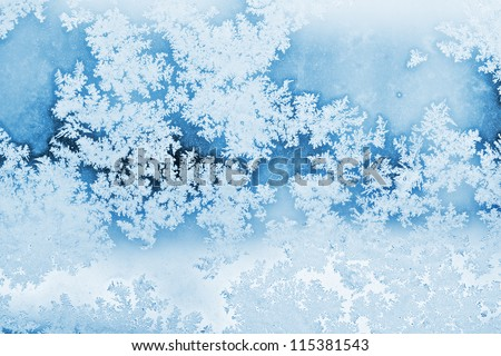 winter rime background - stock photo